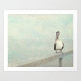 Pelican Bird Art Print