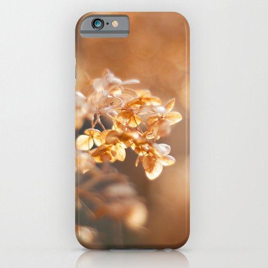 Gold Glitter iPhone & iPod Case