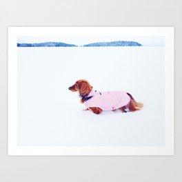 Red dachshund in winter Art Print