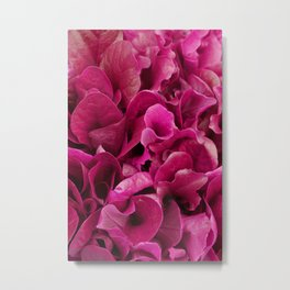 Pink Foliage Photo Metal Print