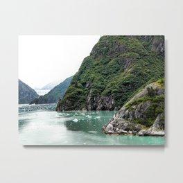 Views through a Fjord Metal Print