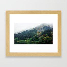 Greenish Days Framed Art Print