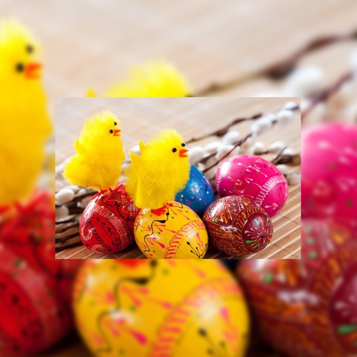 Easter eggss and fluffy chickens Duvet Cover
