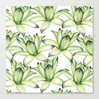 succulents Canvas Prints featuring Succulents by Julia Badeeva