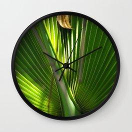 Saw Palmetto Closeup Wall Clock