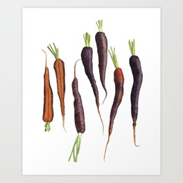Purple Haze Carrots Art Print