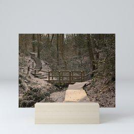 Snowy Ironbridge Gorge Mini Art Print