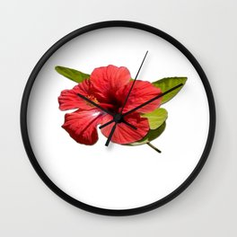 A Red Hibiscus Flower Isolated On White Background  Wall Clock