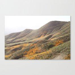 Poppy Super Bloom Pastel Canvas Print
