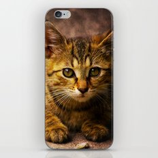 The Orphan iPhone & iPod Skin