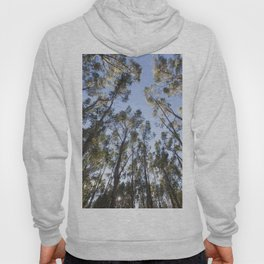 Eucalyptus Tree Hoody