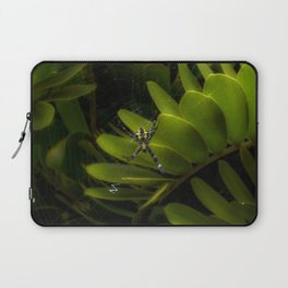 Tropical spider Laptop Sleeve