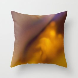 Fluid dreams of warmth Throw Pillow
