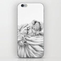 Lion's mane G006 iPhone & iPod Skin