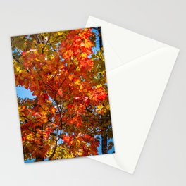 Coos County Autumn #34 Stationery Cards