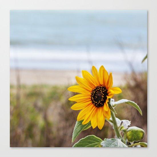 Sunflower near ocean Canvas Print