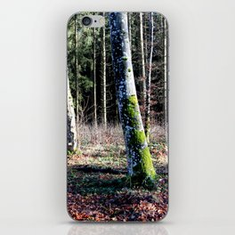 Forest in Germany 2 iPhone Skin