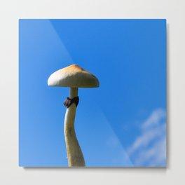 mushroom in the sky Metal Print
