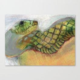 Snake Canvas Print