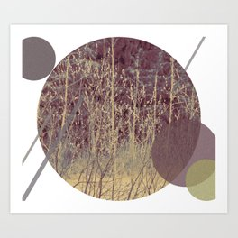 Abstract forest Art Print
