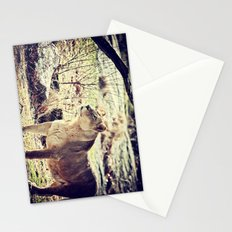 Something Caught His Eye Stationery Cards
