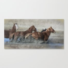 Mustangs Getting Out of a Muddy Waterhole the Fast Way painterly Canvas Print