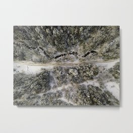 A road through the Evergreen Forests in British Columbia Metal Print