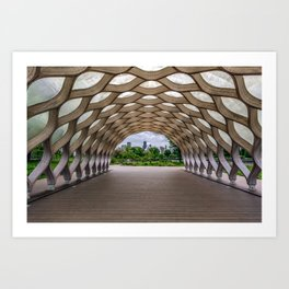 Chicago's Honeycomb in Lincoln Park Art Print