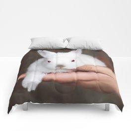Bunny in hand Comforters