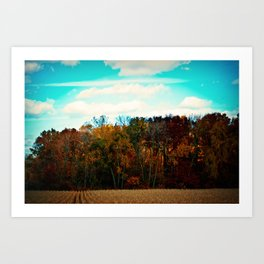 All the colors of mother nature Art Print