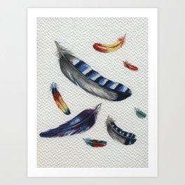 Feather blue Jay Art Print