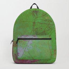 Delhi India Street Map Art Watercolor Green Planet Backpack