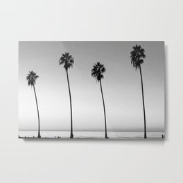 PALM TREES XVI / San Diego, California Metal Print