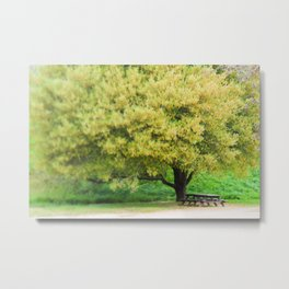 Picnic Table Under Tree Photography Metal Print
