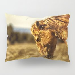 The Weight of the World Pillow Sham