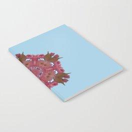Blossom K1 Notebook