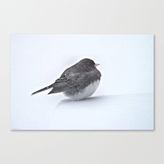 Brave Bird in a Blizzard Canvas Print