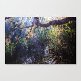 River Myst Canvas Print