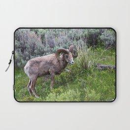 Big Horn Ram Laptop Sleeve