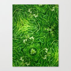 The Mystery Of The Grass Canvas Print