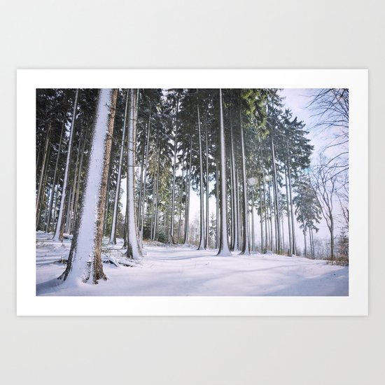 winters magic Art Print