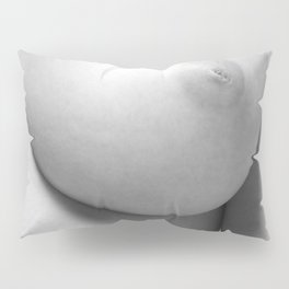 Perfect proportion Pillow Sham