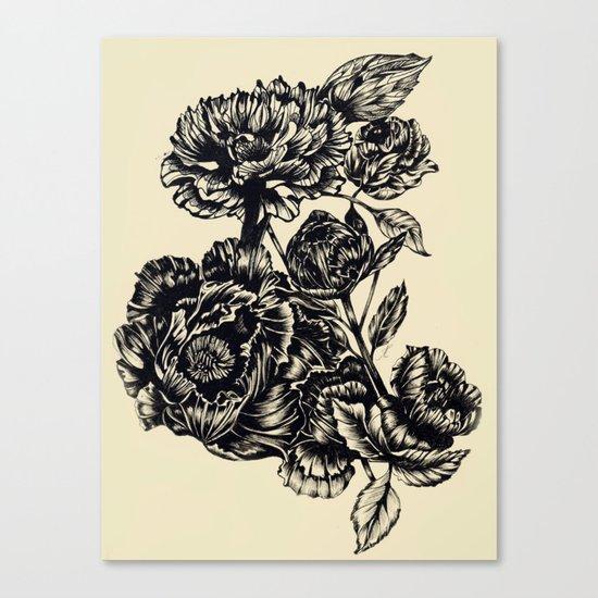 Peonies, black & white Canvas Print