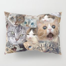 Many expressions of Cats Pillow Sham