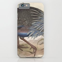 008 Vulturine Guineafowl numida vulturina4 iPhone Case