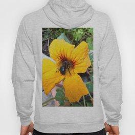Black bee Hoody