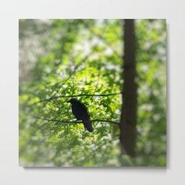 Black Bird Summer Green Tree Metal Print