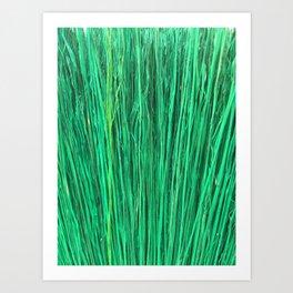 Green Brushwood Photography Art Print