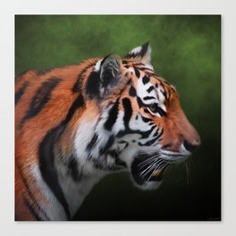 A Leader - Siberian Tiger Art Canvas Print
