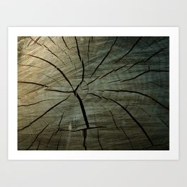 Heart Wood Art Print